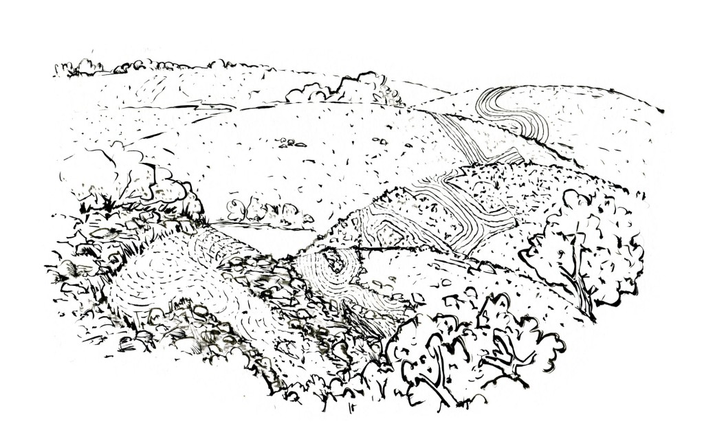 Black and white Drawing of a landscape with a trail running through it, spelling trails