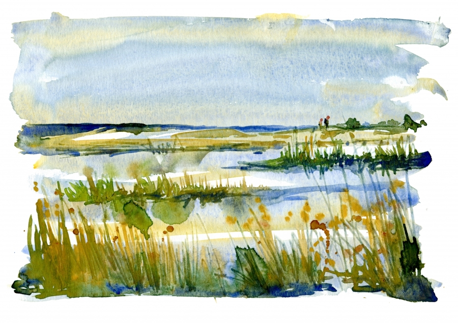 Watercolor of a coastal trail