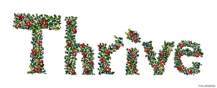 thrive-flowers-written