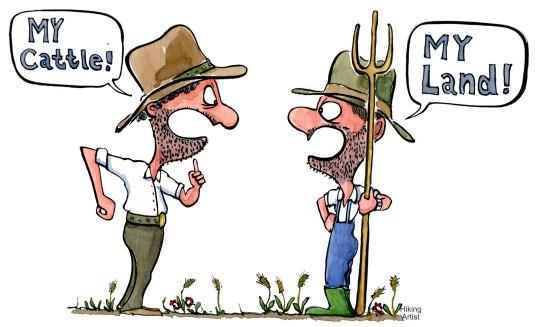 WEB-illustration-land-versus-cattle