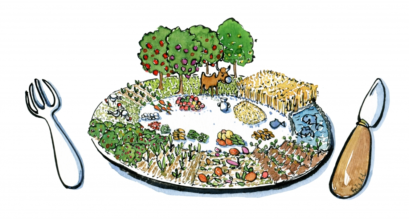 Drawing of a plate with local food