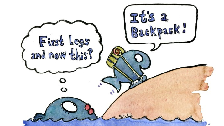 Drawing of a fish with a backpack saying it's a backpack, other fish watching from the water