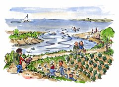 drawing of a coastal hiking trail