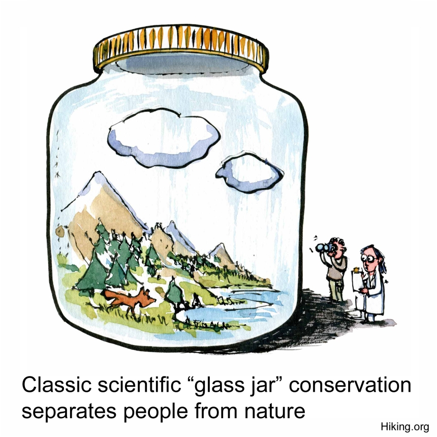 Drawing of nature inside a glass jar