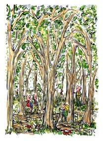 Drawing of hikers between huge trees