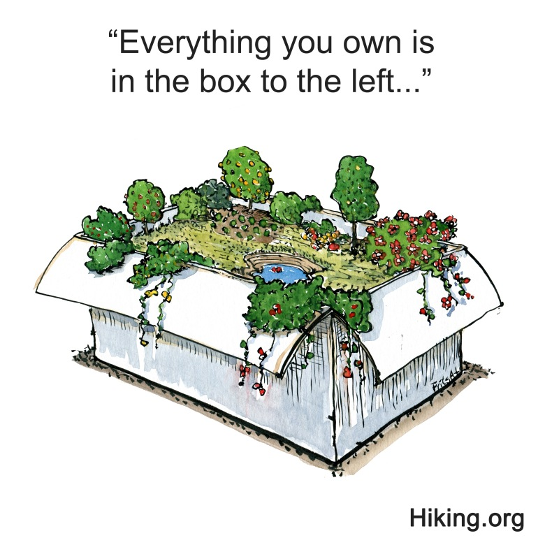 Drawing of a box with nature in it
