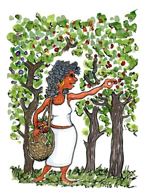 walking-woman-picking-fruit-wild-food-illustration-by-frits-ahlefeldt
