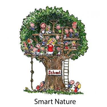 Drawing of a school in a tree
