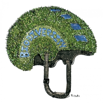 biodiversity-as-proctive-safety-helmet-illustration-by-frits-ahlefeldt
