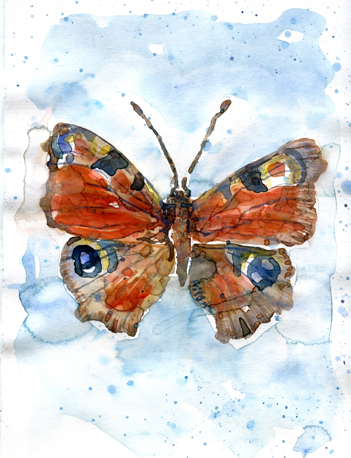 Watercolor of butterfly by Frits Ahlefeldt