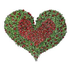 flower-heart-red-roses-love-illustration-by-frits-ahlefeldt