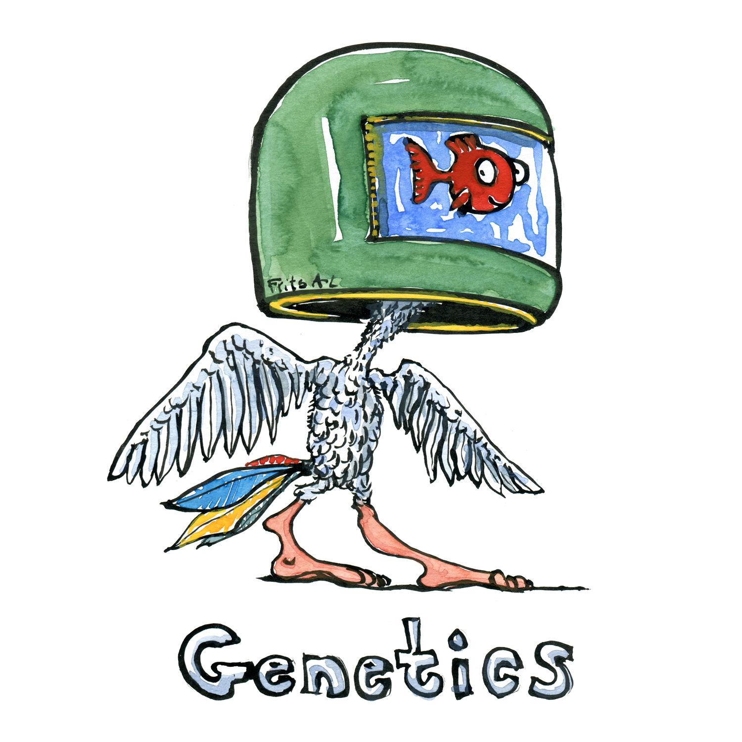 Drawing Of A Fish In Helmet With Bird Body And Human Legs Genetics