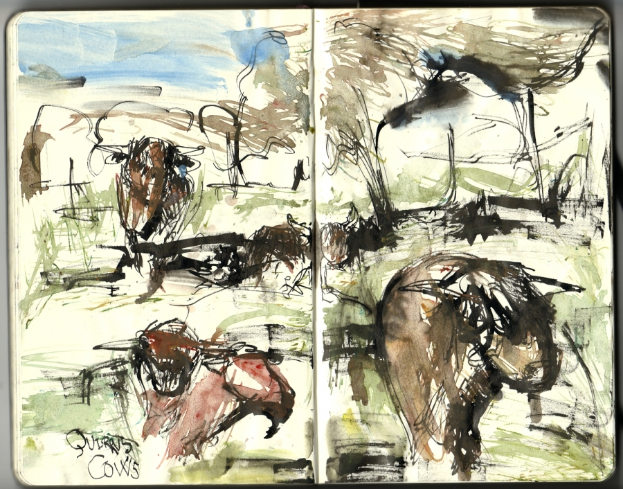 Drawing from a moleskine sketchbook, from a hike