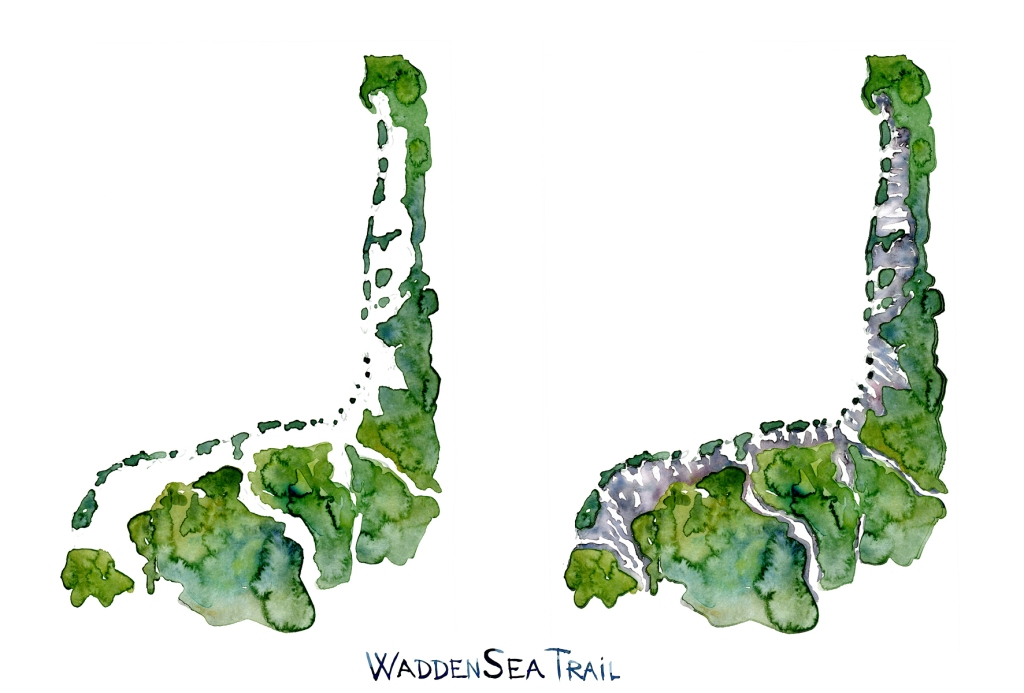 Watercolor illustration of the high and low tide of the Wadden sea trail. Illustration by Frits Ahlefeldt