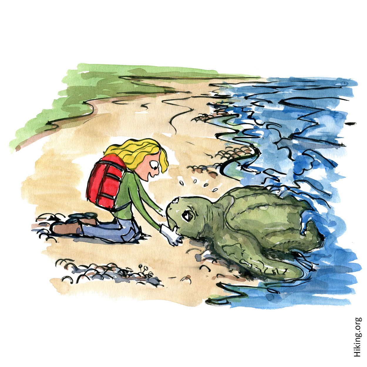 Hiker girl helping huge stranded sea turtle. Illustration by Frits Ahlefeldt, Hiking.org