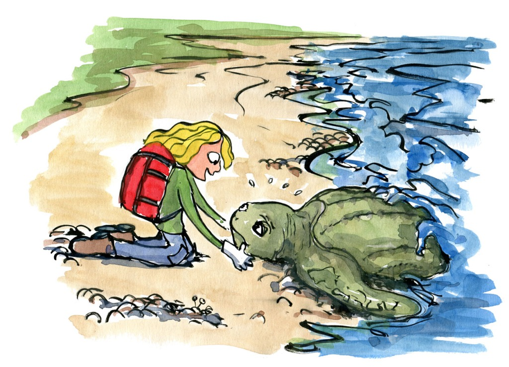 Hiker girl with red backpack helping stranded sea turtle. Drawing by Frits ahlefeldt