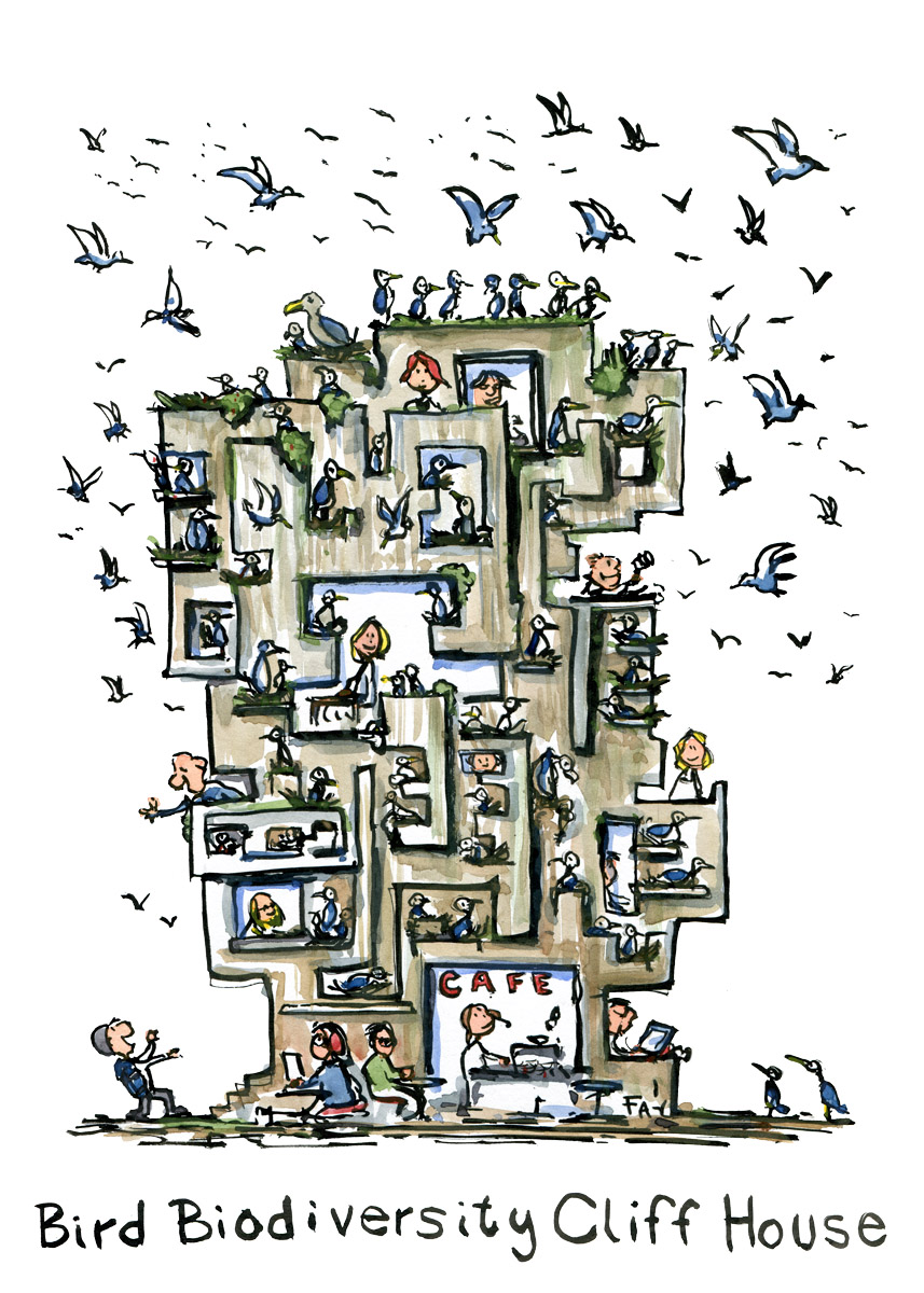 Illustration of a bird cliff house surrounded by flying birds. Drawing by Frits Ahlefeldt