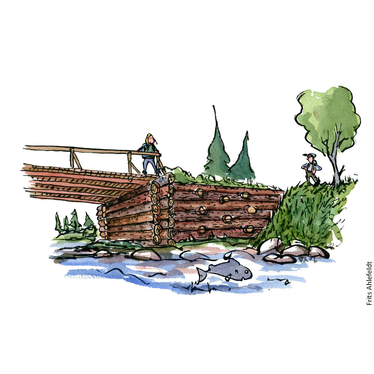 Illustration of solid wood bridge construction. Illustration by Frits Ahlefeldt
