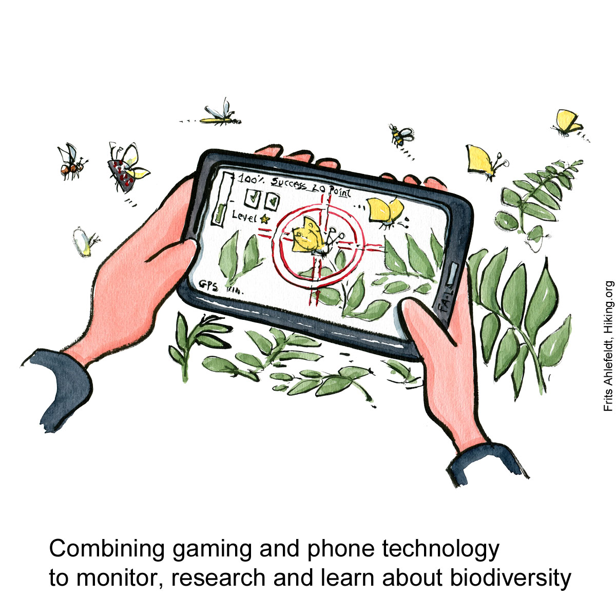 Illustration of hands holding a phone with a biodiversity game app on it. Citizen Science drawing by Frits Ahlefeldt