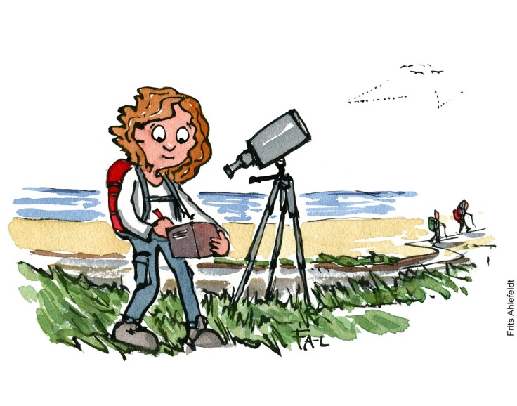 Hiker watching birds taking notes Citizen Science illustration by Frits Ahlefeldt