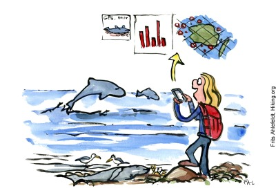 Drawing of a hiker with a phone, collecting data about whales along the coast. Illustration by Frits Ahlefeldt