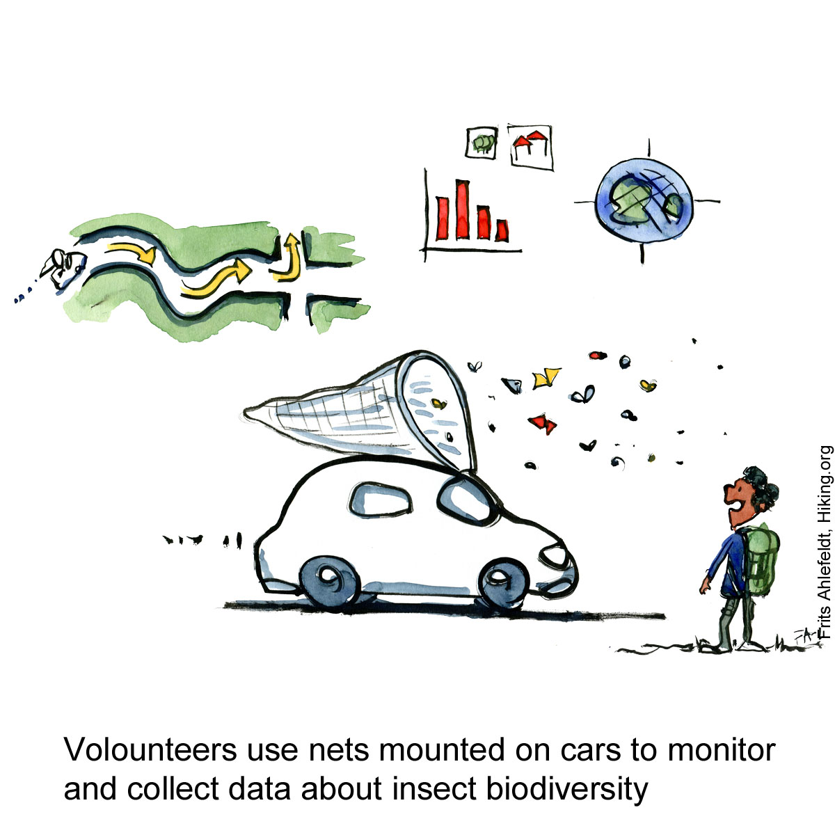 Drawing of a car with a net attached to catch and research insects. Citizen Science illustration by Frits Ahlefeldt